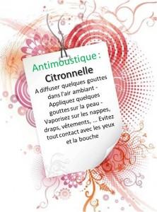 Antimoustique