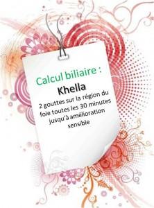 Calcul biliaire