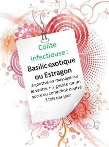 Colite infectieuse